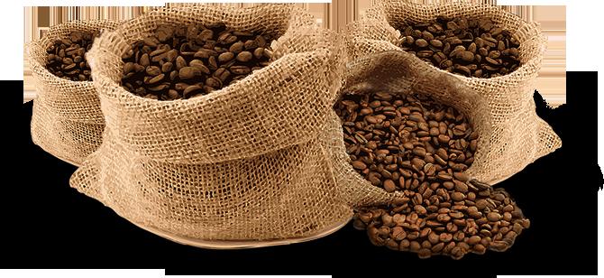 Cà phê sạch nguyên chất 100%